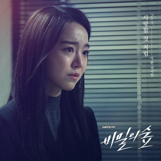 마이틴 시헌