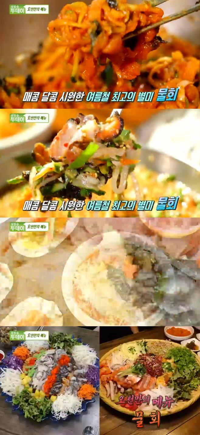 '생방송투데이' 대왕접시 산오징어 물회+육회 물회 쟁반 맛집 홍대 토핑냉라면 맛집 쿠자쿠