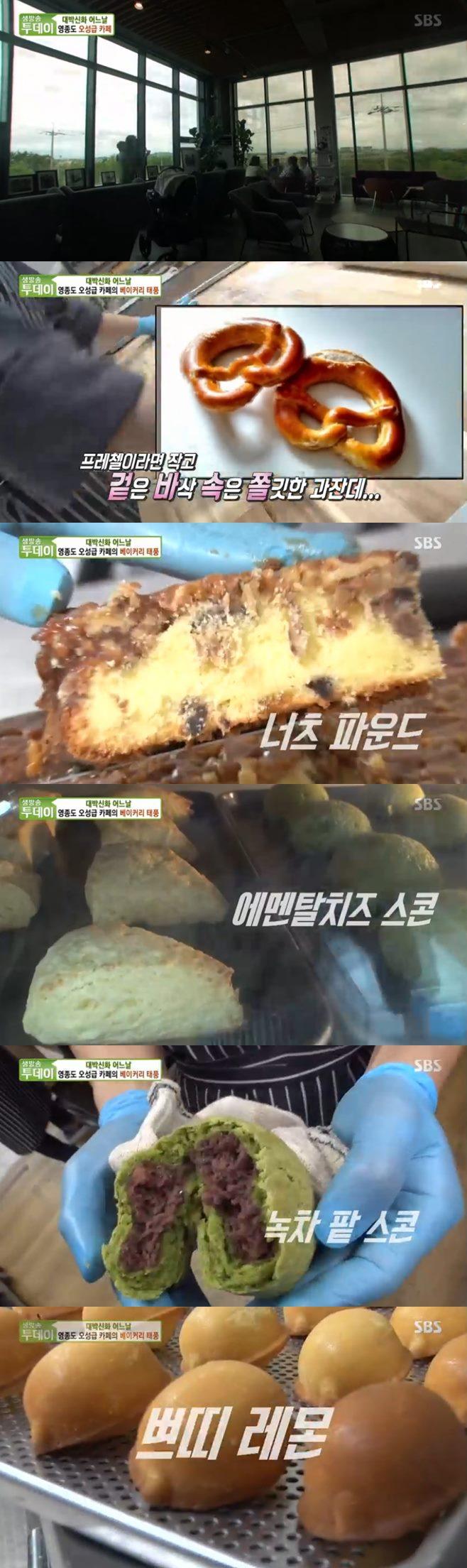 생방송투데이 영종도 오성급 카페 스타파이브 만두전골 고수뎐 맛집