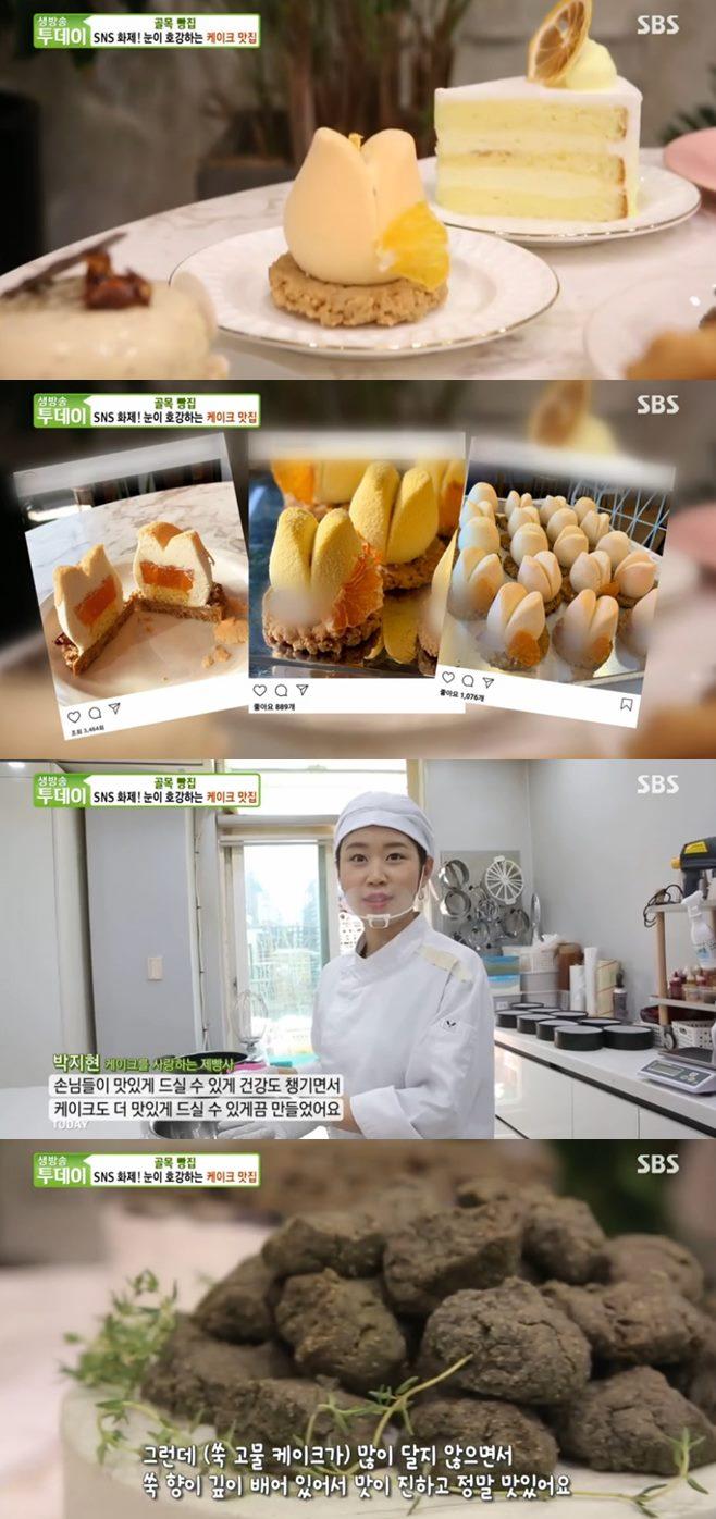 '생방송투데이' 일산 슈라즈케이크+장어덮밥(노다지장어)+매운양대창(초대창) 맛집