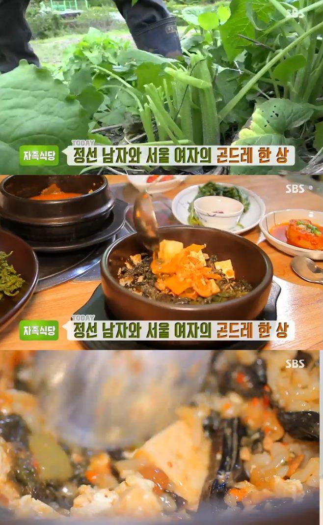 '생방송투데이 자족식당' 곤드레정식 크을농 맛집, 200% 나물 밥상