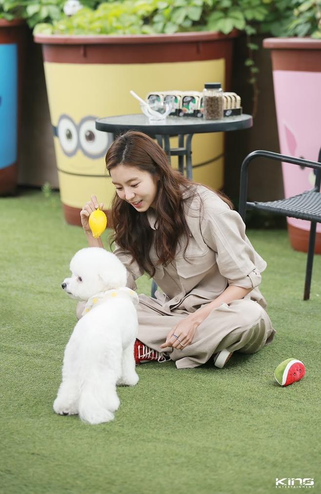 KBS2 개는 훌륭하다