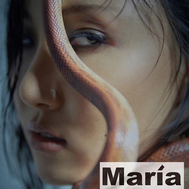 마마무 화사 마리아