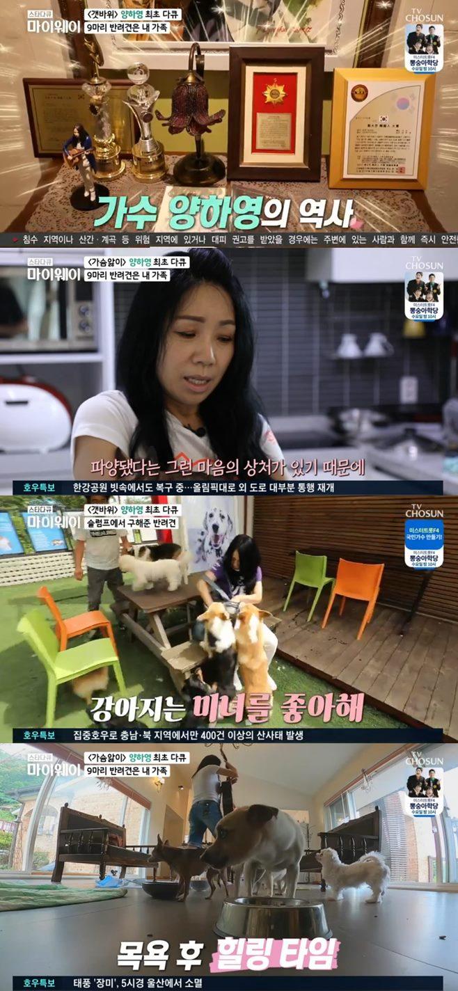 스타다큐 마이웨이 가수 양하영 나이 집 반려견 남편 결혼 미혼 유기견